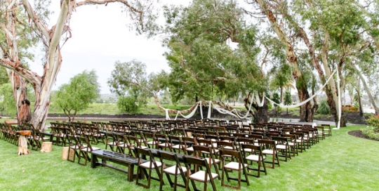 New fruitwood folding chairs go great with Rustic Events picnic table rentals. Photography by Leah Marie at Galway Downs in Wine Country, Temecula, CA.